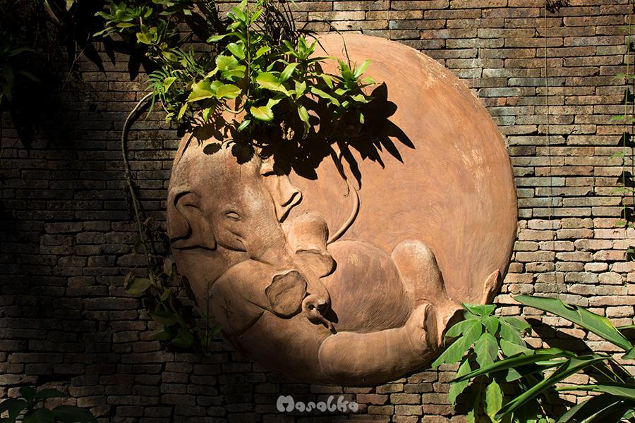 słoń w wat pha lat