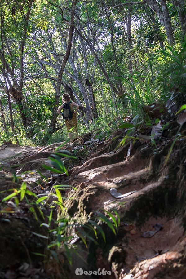trekking do doi suthep